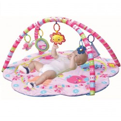 T241 - The Pinky House Play Gym