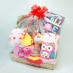 Newborn baby hamper girls